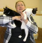 Keena and Kaine adopted 1/2/05.  This sister brother team are little Manx kittens that were resolved to finding a new loving home in 2005.
