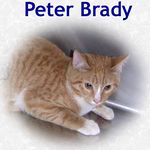 Peter Brady adopted 4/23/05.