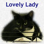 Lovely Lady adopted 4/16/05.