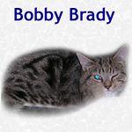 Bobby Brady adopted 4/23/05.