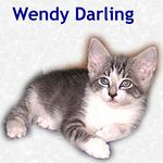 Wendy Darling adopted with her brother, Nibs,  on 7/16/05.