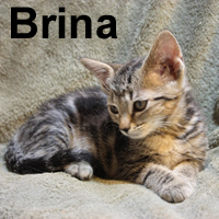 Brina was adopted from her foster home on Friday, August 7, 2009.