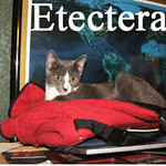 Electra and Etcetera were adopted from their foster home on Friday, April 23, 2010.