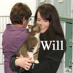 """Willow (""""Will"""" GMR #6) was adopted from the Cat House and Adoption Center during the Adoption Event Tuesday evening, April 6, 2010."""