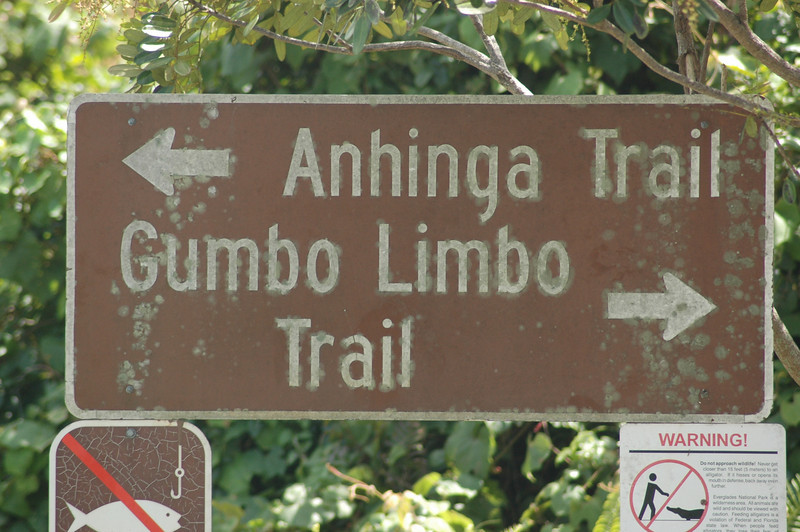 The only sign that said where I was...  The Gumbo Limp Trail was a 1/2 mils trail with bunch of trees... not very exciting in photos (to me)