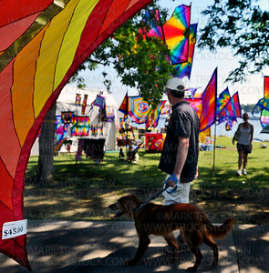 Sunlit banners from 'Magibob Flags' greet visitors to Art on the Lake on Excelsior Commons Sunday, June 10, 2012.  The popular South Lake Minnetonka art fair is in its 32nd year.