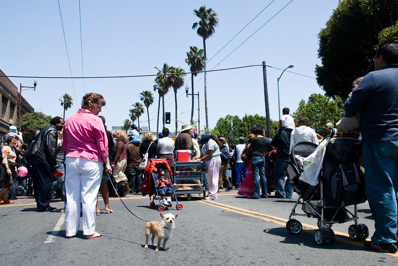A dog and its owner in San Francisco's Mission district.