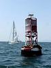 Sealions relax on a buoy off the coast of Redondo Beach, California.