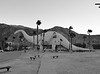 Cabazon Apatosaurus - black and white