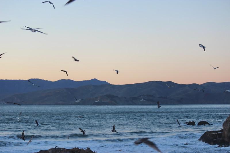 Sunset Signals Final Flight