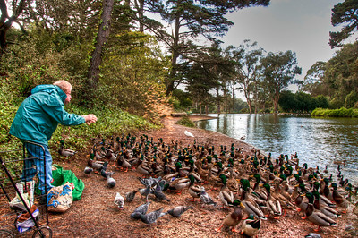 man-feeding-ducks-4