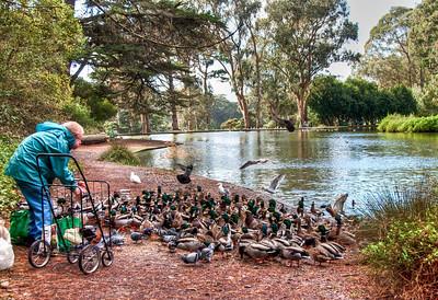 man-feeding-ducks-3