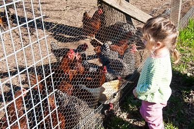 girl-chickens