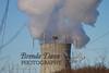 02-04-2012-Nuke_Plant-Nest-8910