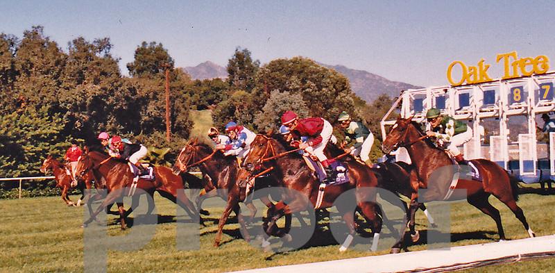 Santa Anita Breeders Cup race, circa 1985