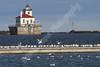 02-04-2012-Seagulls-Lighthouse-8646