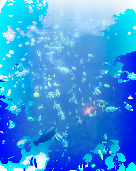 Sea World Fish Tank