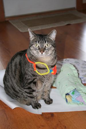 Anissa made a necklace for Sammara. March 2011