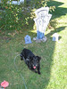 Mitch at Graveyard