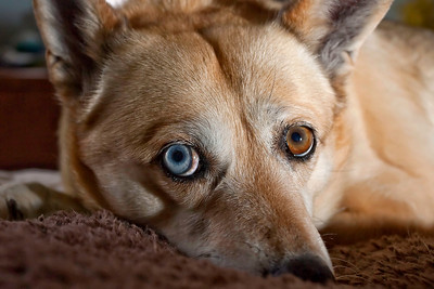 This is the real color of her eyes!