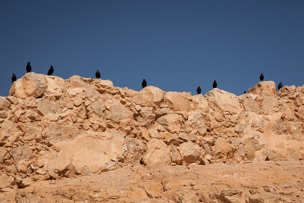 Masada National Park - With the Roman breach imminent, Eleazar talked to the 960 men, women & children, telling them that it would be better to take their own lives and the lives of their families than to live in shame and humiliation as Roman slaves.