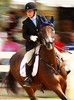 """January 10th, A rider at the """"Bit of Brittan"""" competition in Chicago. I was working to reduce shutter speeds to capture more of the energy of the shot in camera. I thought this shot was a loss because of the lack of focus on the horse but it turned out nicely with focus directed to the rider focusing on her next jump."""