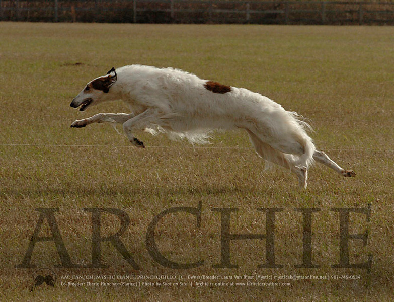 Ad I created for Archie in 2007 (never run). Photo by Shot On Site.