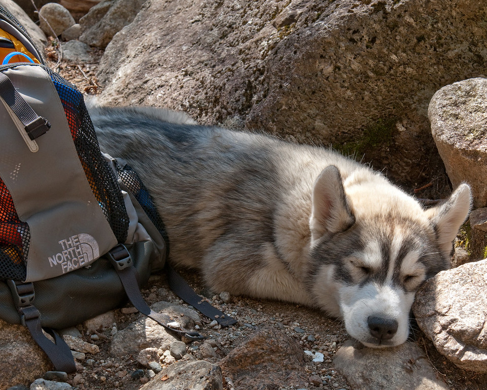 Zoe is zonked at the top of Bridal Veil Falls<br /> An ad for The North Face?<br /> 4/24/10