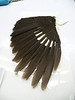 27 - Pileated Woodpecker wing.