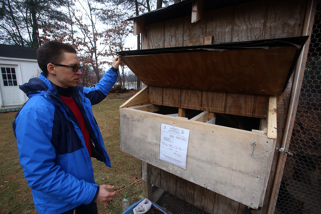 . Alexander Melville of Chelmsford with his family\'s chicken coop. Under new town regulations, they face costs including $1,500-2,000 for a plot plan. This is the egg box, where the chickens lay most of their eggs. (SUN/Julia Malakie)