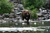 bears-06-28-05-3600