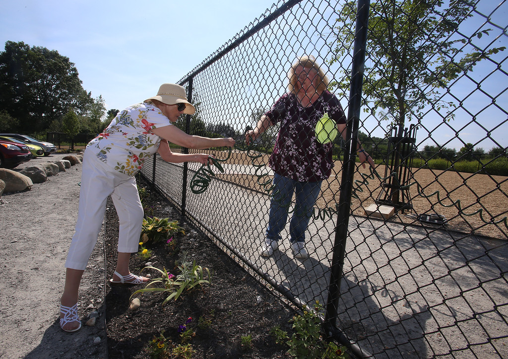 . Billerica Dog Park. Shirley Holdman, left, and Brenda Komarinski, both of Billerica, and members of Friends of the Billerica Dog Park Committee, pull a hose through the fence to water the plants at the recently opened Billerica Dog Park. (SUN/Julia Malakie)