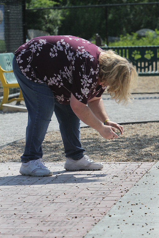 . Brenda Komarinski of Billerica, treasurer of Friends of the Billerica Dog Park Committee, takes picture of inscribed bricks at the recently opened Billerica Dog Park, to send to donors who have moved out of town. (SUN/Julia Malakie)