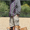 Saturday morning at the Billerica Dog Park. Will Daugherty of Billerica with his two rescue dogs, Stella, a beagle-Chihuahua mix, and Yoshi, a beagle-corgi mix. (SUN/Julia Malakie)