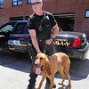Billerica Police K-9 officer Don MacEachern, with his 2-1/2 year old bloodhound, Wizard. Besides leaving air conditioning on, he has a Hot Dog Cooling System in his car which sets off alarms if the AC fails and the interior temperature rises to dangurous levels, and also turns on a window fan.l (SUN/Julia Malakie)