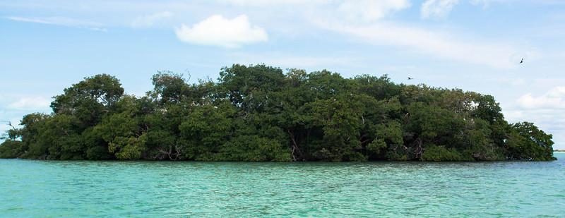 Bird Island Xcalak, Mexico