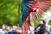 Bronx Zoo_284_20160521