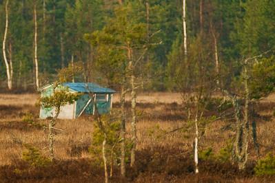 Piilokojusta olisi päässyt kuvaamaan lähempää...  From the mobile cabin could take pictures closer...