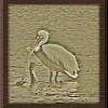 May 7, 2012.  White Pelican in Hyatt Lake, Oregon.