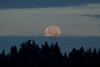 Full moon at dawn