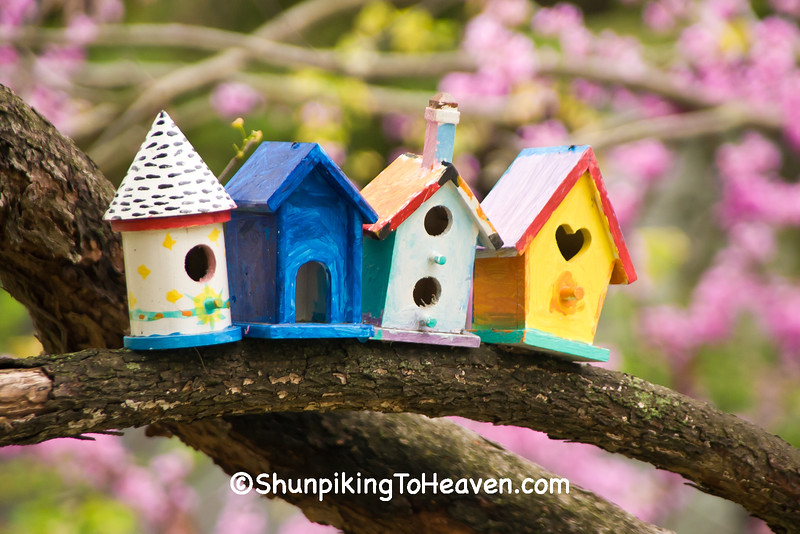 Colorful Mini Birdhouses, Madison, Wisconsin