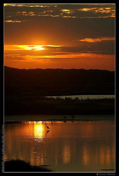Sunset at Eagle Bluffs