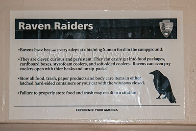 Sign, warning about Ravens stealing food in the campground, Canyonlands National Park, Utah, USA, North America