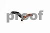 DSC_7696 Osprey w Catfish