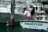 Fishing-1164