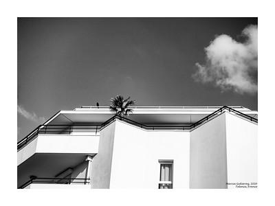 Black Bird on White Building