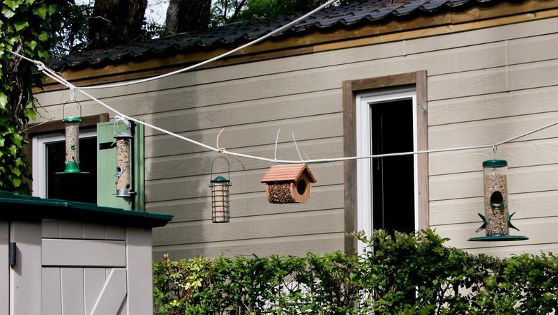 Bird Feeder farm in France