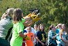 Mississippi Kite being released.  Obviously not happy at this moment.