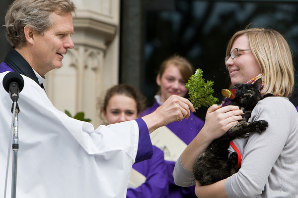 Blessing of the Animals, Washingt National Cathedral, 10/4/2010