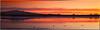 Bosque Del Apache Sunset